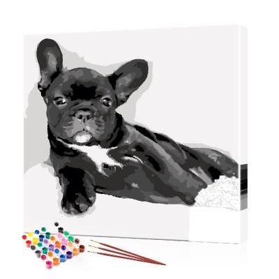 Картина по номерам Бульдог ArtSale размер 40х40 см